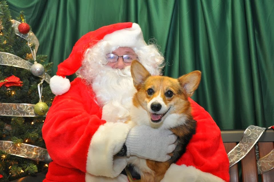 Santa Paws is coming totown!
