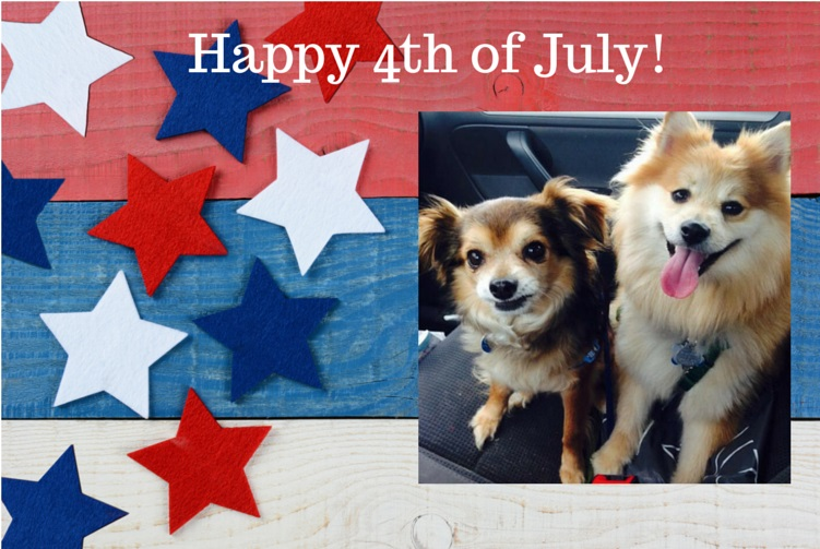 5 Tips for a Dog Friendly 4th of July!