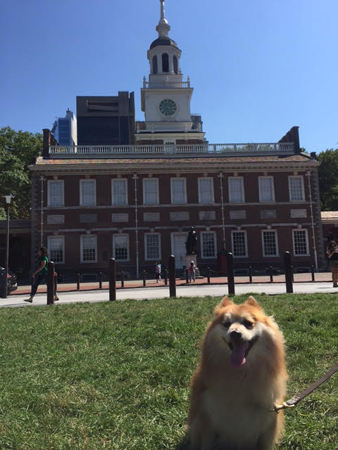 Dog-Friendly Road Trip: Philadelphia
