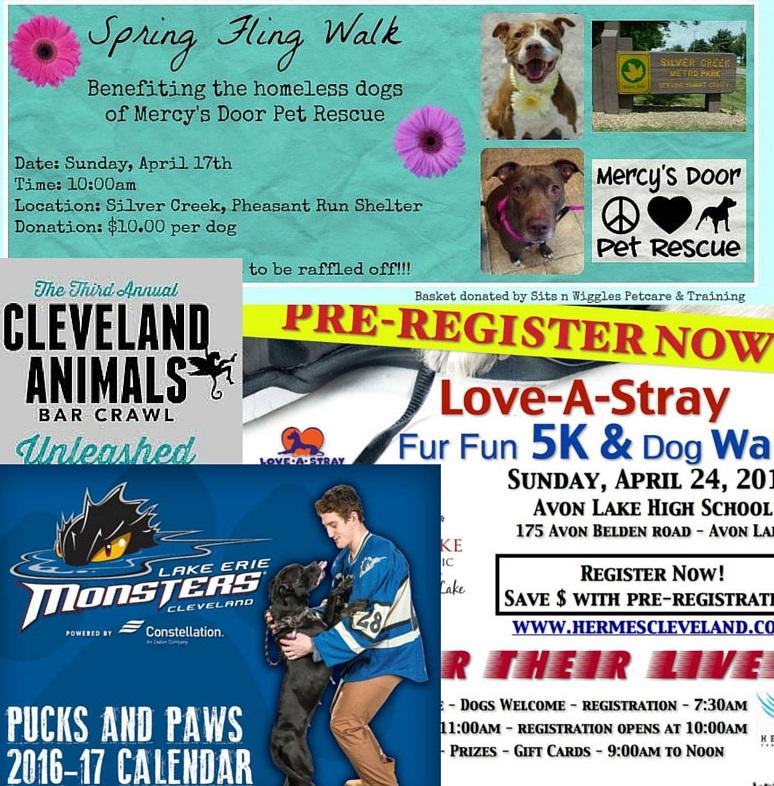 Mark Your Calendars: April Dog-FriendlyEvents