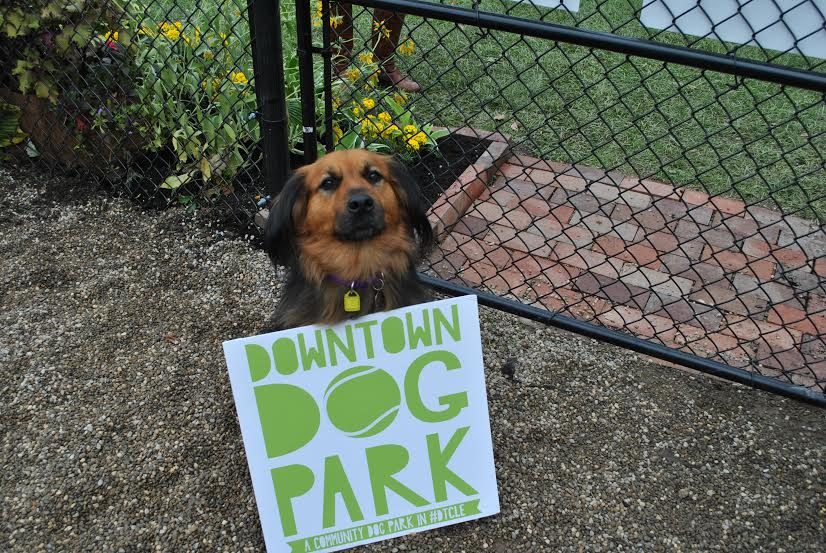 There's a new dog park downtown!