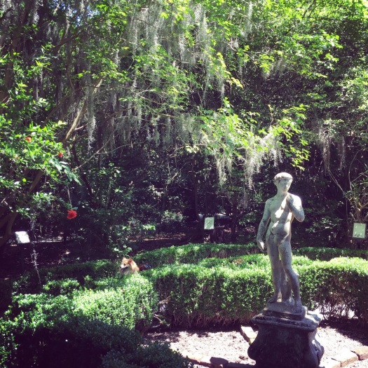 FInd Hunter in a Southern Plantation maze!
