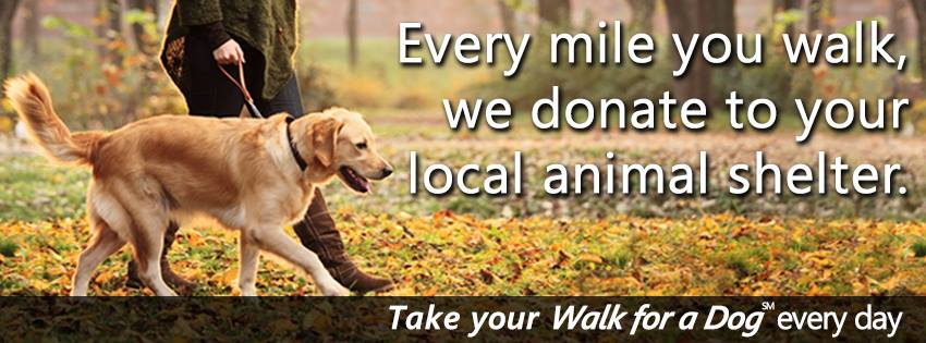 Raise money for local shelters just by walking your dog