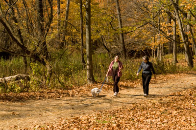 hiking-walking-dog-cleveland-metroparks-fall