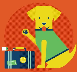 Holidays travel plans? What do you do with your pet?