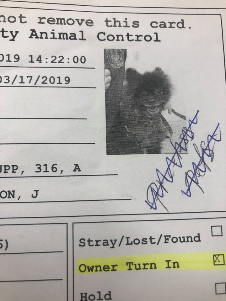 The ones that are left